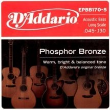 D'Addario EPBB170 Acoustic Bass Phosphor Bronze 4 String