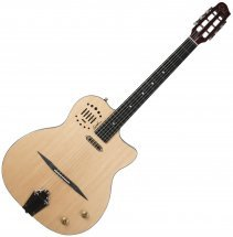 Godin Multiac Gypsy Jazz with TRIC