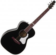 Seagull Artist Limited Tuxedo Black EQ with TRIC