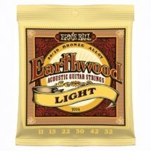Ernie Ball P02004 Light