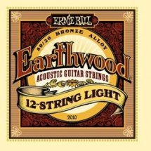 Ernie Ball P02010 12 String Light