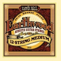 Ernie Ball P02012 12 String Medium