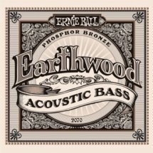 Ernie Ball P02070 Earthwood Bass
